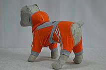 Костюм для собак Теніс хлопчик, фото 3