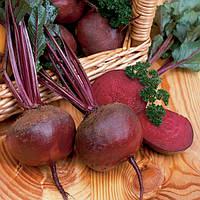 Семена свеклы Нобол, Clause 250 грамм | профессиональные