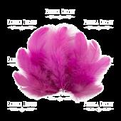Набор перьев Фуксия