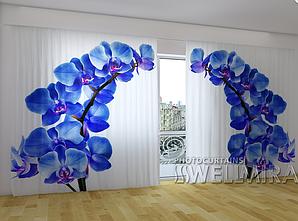 """Панорамные Фото шторы """"Синие орхидеи"""" 270 х 500 см"""