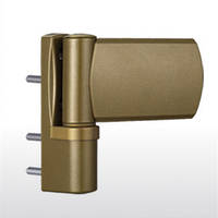 Дверная петля greenteQ TB 120.ZD.K  перламутровое золото RAL1036