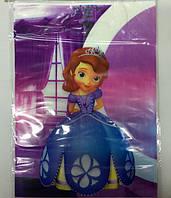 Пакет подарочный 30*22 см Принцесса София полиэтилен