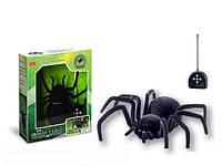 Игрушка гигантский паук на радиоуправлении Черная Вдова 779: длина 28см