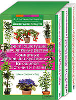Красивоцветущие и декоративные растения. Комнатные деревья и кустарники. Вьющиеся растения и лианы (комплект из 3 книг)