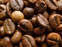 Свежеобжаренный кофе в зернах Малави АА плюс (ОРИГИНАЛ), арабика Gardman (Гардман) , фото 1