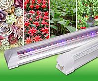 Фитосветильник для растений T8 Led 16W  4RED 2BLUE 1200mm  230V
