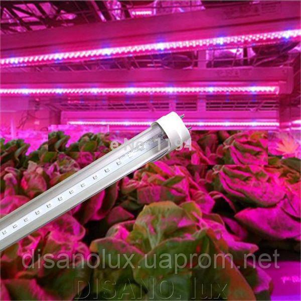 Фитолампа для рослин T8 Led 16W 4RED 2BLUE G13 1200mm 230V