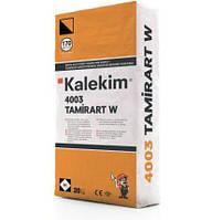 4003 TamirArt W Шпаклевка реставрационная цементная, белая 20кг