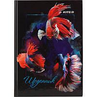Дневник школьный Kite K18-262-2