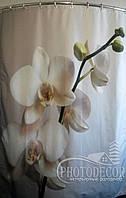 """ФотоШторка в ванную """"Веточка белых орхидей"""" 1,96м*1,45м (1 полотно), люверсы"""