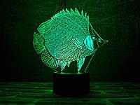"Сменная пластина для 3D ламп ""Рыбка"" 3DTOYSLAMP, фото 1"