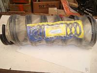 Пружины передней подвески Москвич ИЖ 2126-2717 (Ода Орбита), фото 1