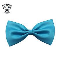 Бантик для выставки собак или кошек яркий голубой, фото 1