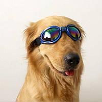 Солнечные очки для собаки синие