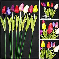 Интерьерные тюльпаны, разные цвета, выс. 64 см., упаковка 8 шт., 35/26 (цена за 1 шт. + 9 гр.)