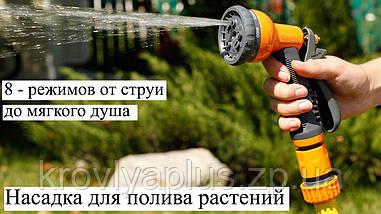 Пистолет  Presto  Joy (Престо джой) 8 режимов