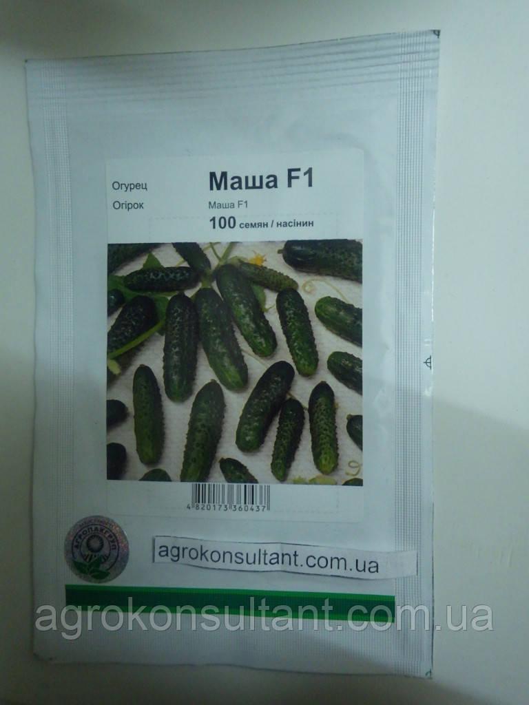 Насіння огірка Маша F1 (Seminis, АГРОПАК+), 100 насінин — ультраранній гібрид (40-45 днів), партенокарпик