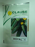 Семена огурца Роял F1 (Clause) 10 г — пчелоопыляемый, ранний гибрид (48-50 дней)