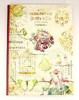 Тетрадь А5 80 листов, интегральная обложка, внутренний блок бумаги в леточку, Мандарин