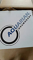 Aquarian Super Kick II 22