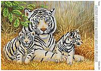 "Схема под бисер ""Тигры"""