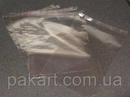 Пакеты полипропиленовые 60х115мм с клапаном и клейкой лентой