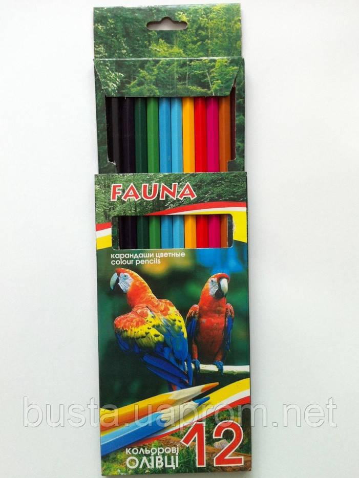 Карандаши цветные FAUNA 12шт