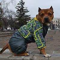 Дождевик Сити для собак ( мальчик ,60см )
