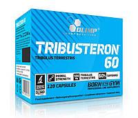 Повышение тестостерона Olimp Tribusteron 60 120 caps