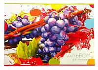 Альбом для рисования Виноград 40 листов А4