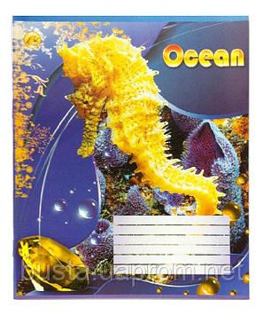 Тетрадь 18л линия Океан, фото 2
