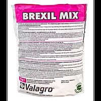 Brexil Mix 100g