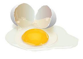 "Протеин яичный ""Gold Egg Protein"" PROFIPROT, 1кг, фото 3"