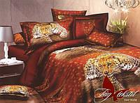 Полуторный комплект постельного белья. Постельное белье для дома. Постель. Комплект постельного белья.