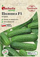 Огірок Полонез F1  10шт. (Насіння з Польщі)