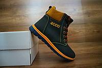 Детские зимние ботинки Ecco 10500 Синий\Рыжий