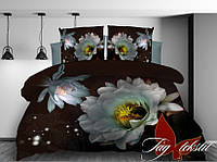 Комплект постельного белья Евро ТМ TAG  MS-CY224