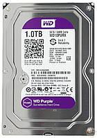 Жесткий диск для видеонаблюдения WD Purple 1 tb