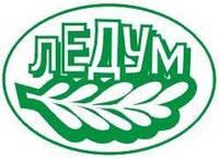 ООО «Ледум»