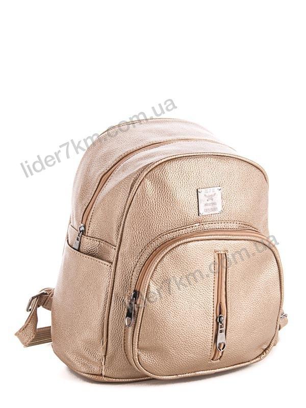 6e3f020b66b7 Купить городскую детский женская сумка-рюкзак спортивный S-114 ...