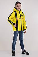 Куртка подросток с капюшоном FC Borussia Dortmund, р 152,158,164,170