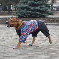 Теплый комбинезон  Холодок  (мальчик) лабрадор (60см) , фото 1