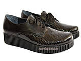 Женские туфли на утолщенной подошве, на шнуровке, натуральная кожа и лак питон., фото 3