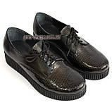 Женские туфли на утолщенной подошве, на шнуровке, натуральная кожа и лак питон., фото 4