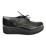Женские туфли на утолщенной подошве, на шнуровке, натуральная кожа с тиснением питон., фото 2