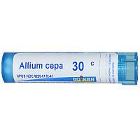 Boiron, Single Remedies, Лук репчатый (Allium cepa), 30C, примерно 80 драже