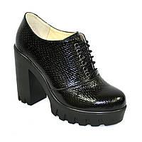 """Женски туфли на тракторной подошве, на шнуровке. Натуральная кожа """"питон"""", фото 1"""