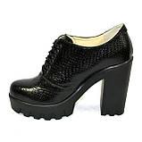 """Женски туфли на тракторной подошве, на шнуровке. Натуральная кожа """"питон"""", фото 2"""