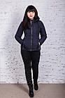 Стильная женская куртка на весну модель 2018 - (кт-239), фото 6