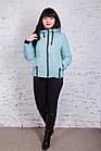Брендовая женская куртка AMAZONKA на весну модель 2018 - (кт-252), фото 7
